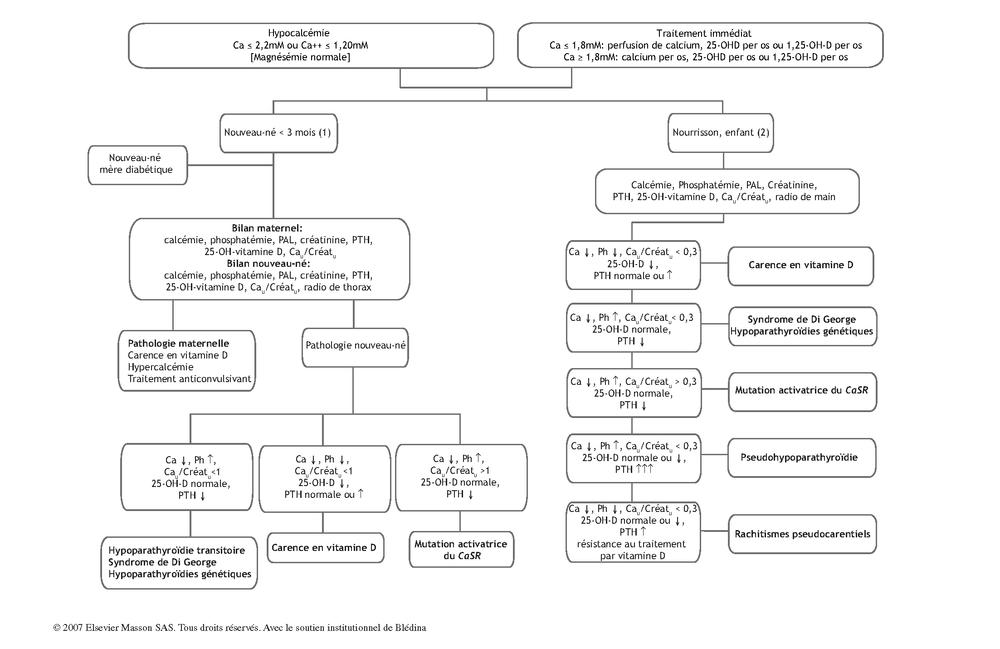 hyperparathyroïdie secondaire ecn