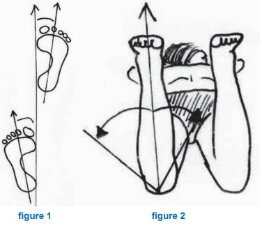 Figure 1 et Figure 2