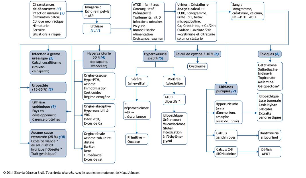 Lithiase urinaire de l'enfant - Pas à Pas en Pédiatrie